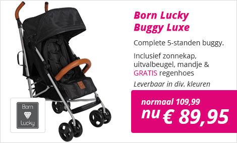 Buggy Born Lucky 5 standen