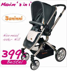 Baninni Maxim 3 in 1